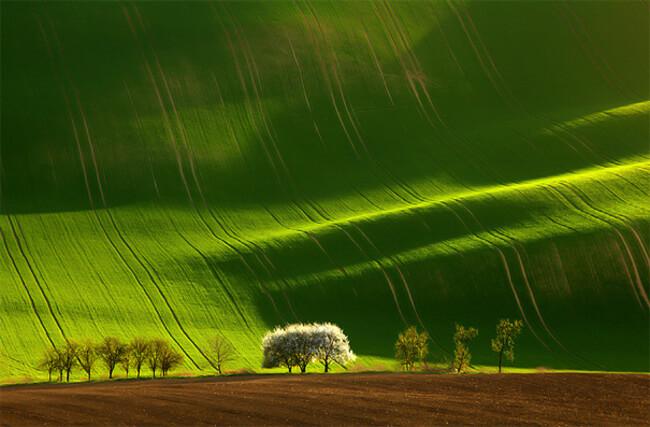 beautiful landscape 33