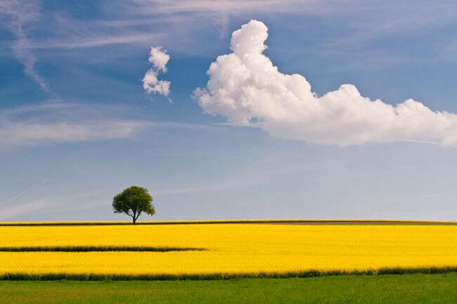 awesome landscape 44