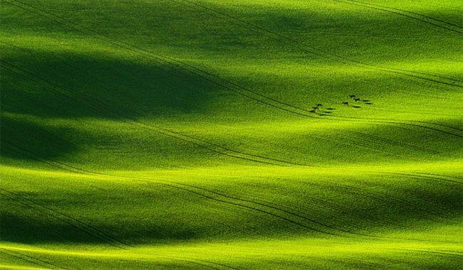 amazing landscape 49