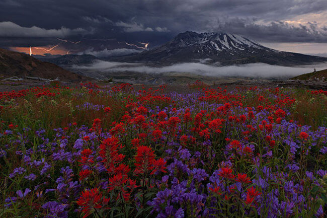 incredible landscape 4