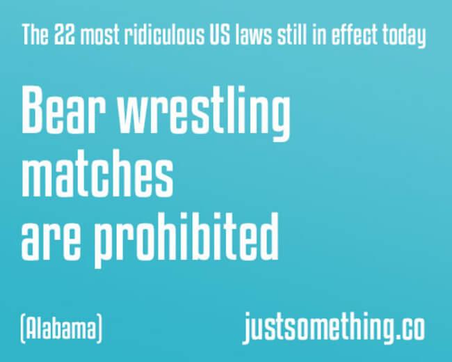 idiotic laws 13