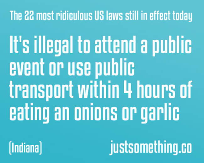 27 Stupid Laws That Are So Dumb They Should Be Illegal