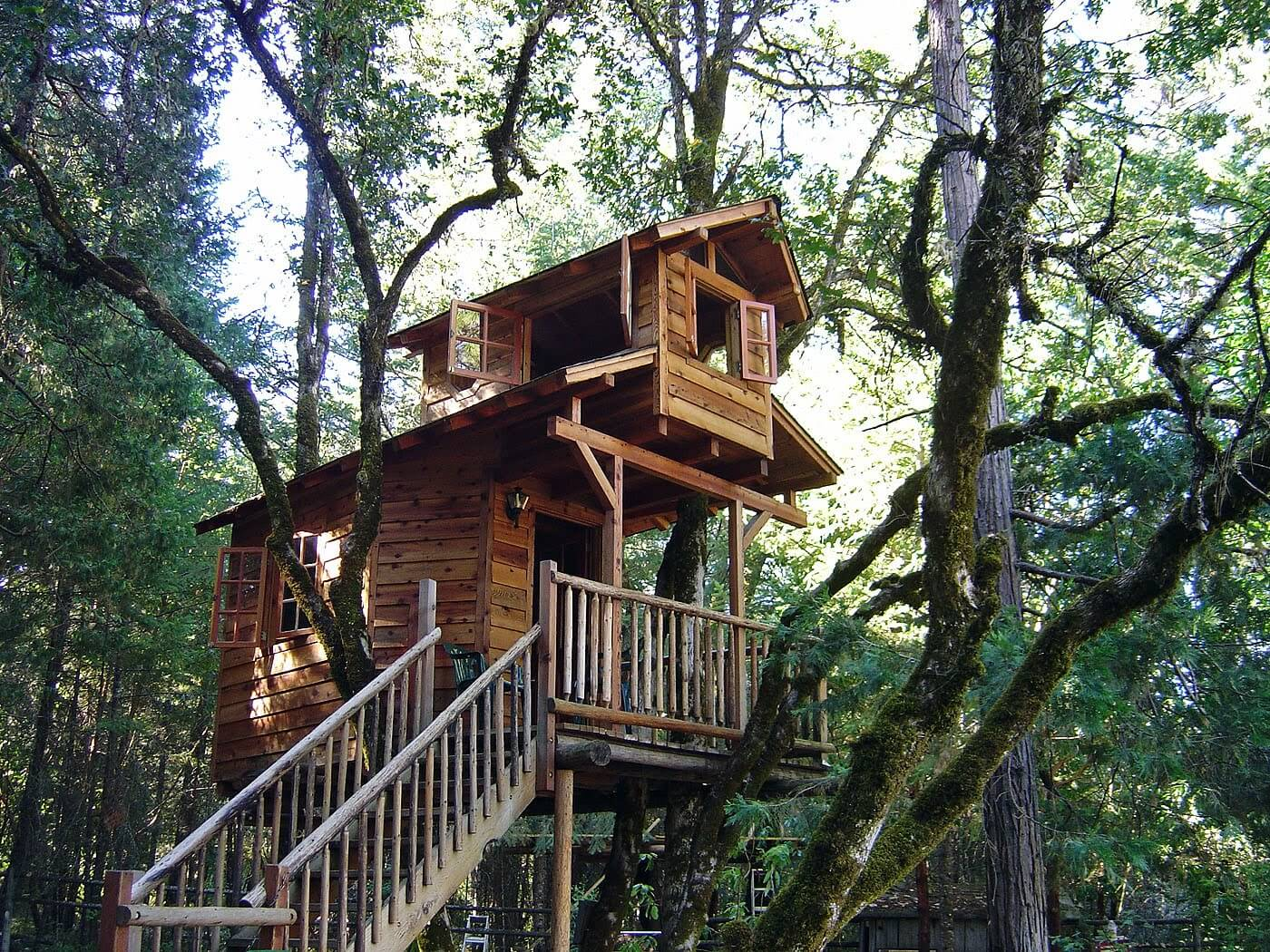 39 amazing tree houses everyone wished they had growing up for Amazing house pictures