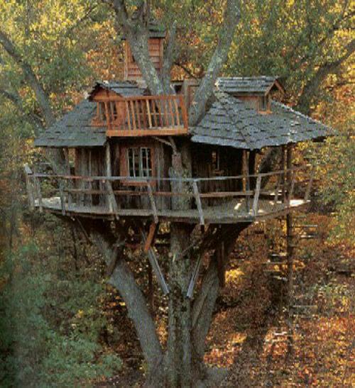 amazing tree homes 11 (1)
