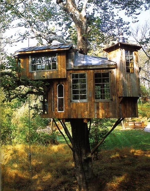 amazing tree houses 14 (1)