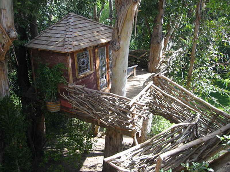 epic tree houses 28 (1)