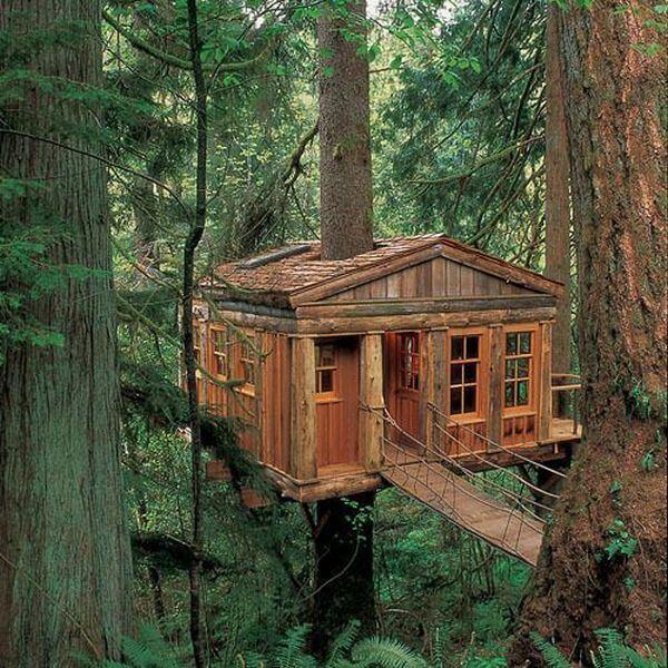 cool tree houses 32 (1)