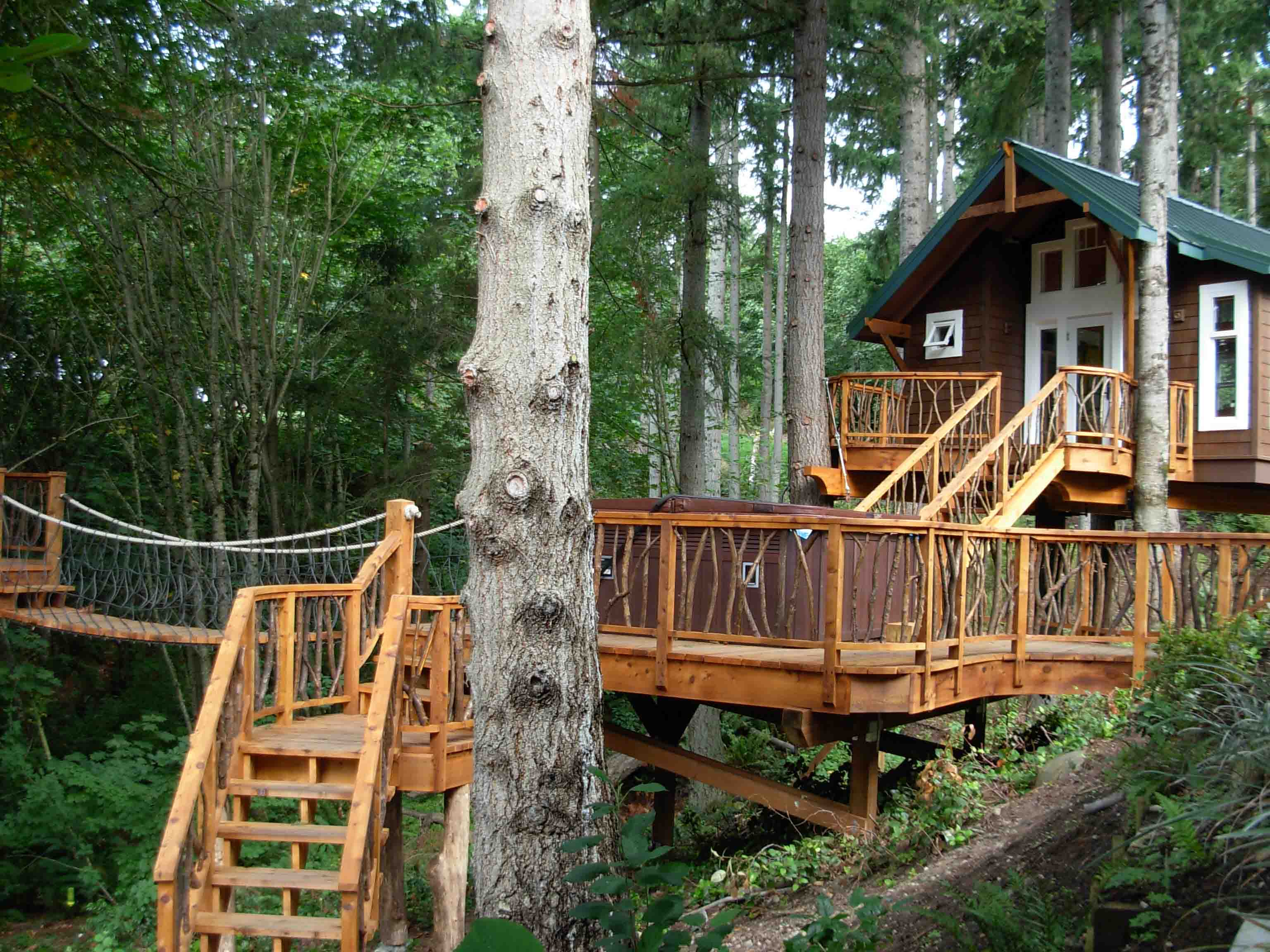 cool tree houses 33 (1)