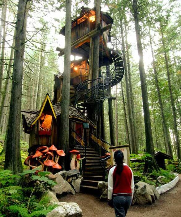 cool tree houses 37 (1)