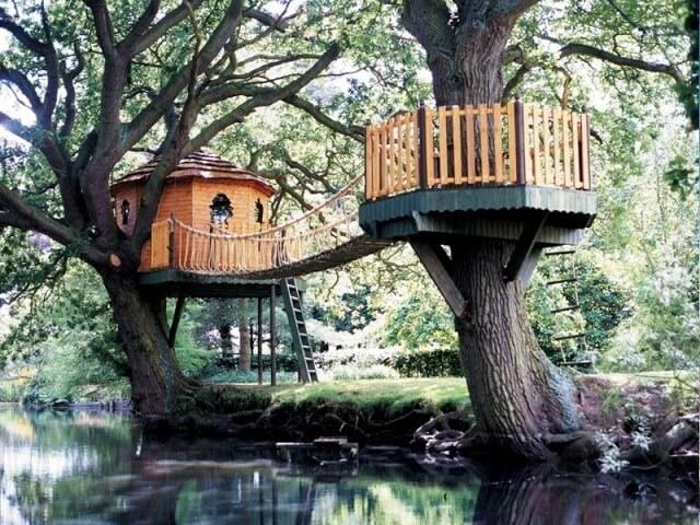 cool tree houses 38 (1)