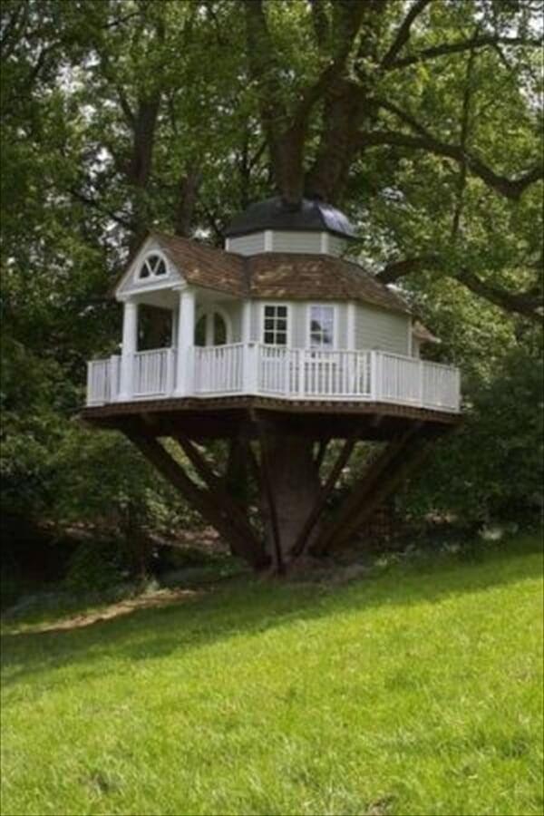 amazing tree homes 4 (1)