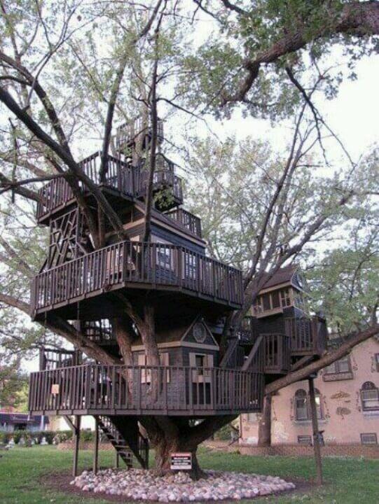 amazing tree houses 40 (1)