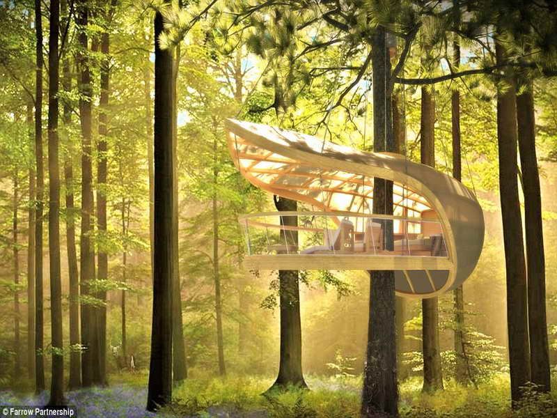 Most Expensive Tree House In The World 39 amazing tree houses everyone wished they had growing up