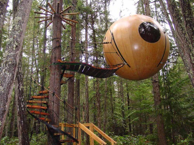 amazing tree homes 8 (1)