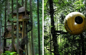 amazing tree houses feat (1)