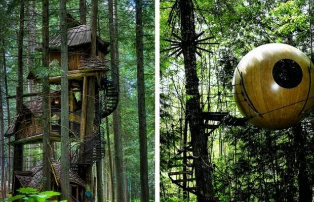 amazing tree houses feat (1)