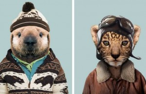 animals dressed as humans feat (1)