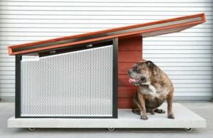 modern dog house feat (1)