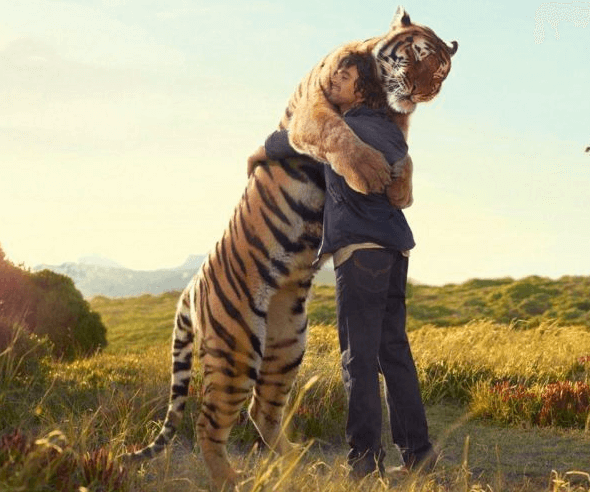 awesome pictures - hugging a tiger