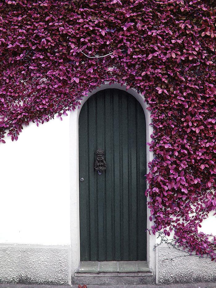 cool doors 11 (1)