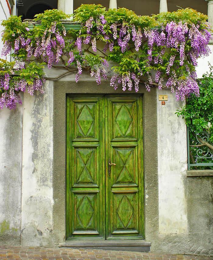 nice doors 19 (1)