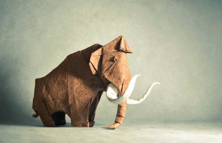 origami animals 6 (1)