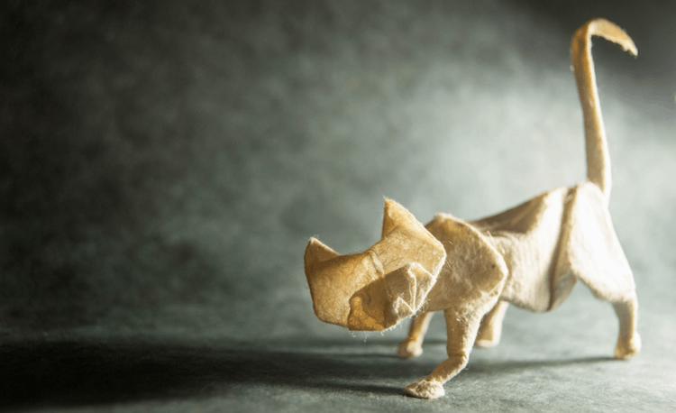 origami art 8 (1)