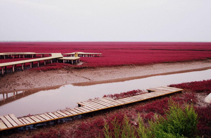 red beach china 3 (1)