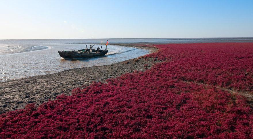 red beach china 4 (1)