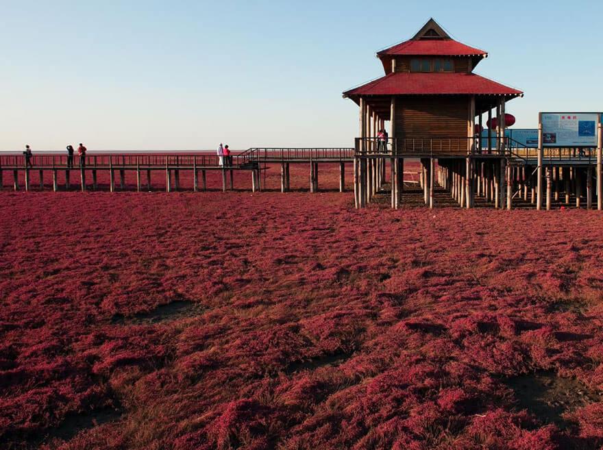 red beach china 5 (1)