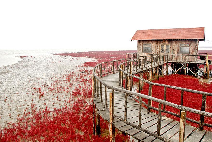 red beach china 9 (1)