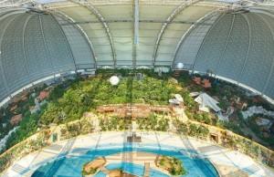 tropical indoor beach feat (1)
