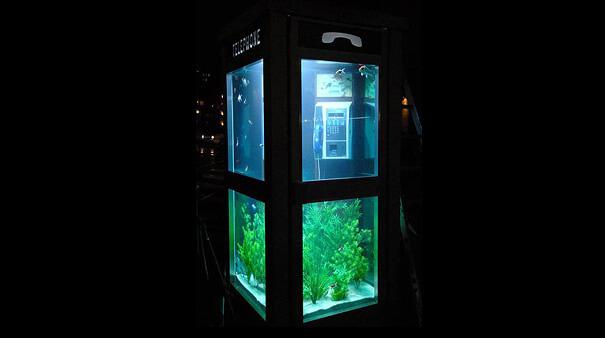 cool aquariums 11 (1)
