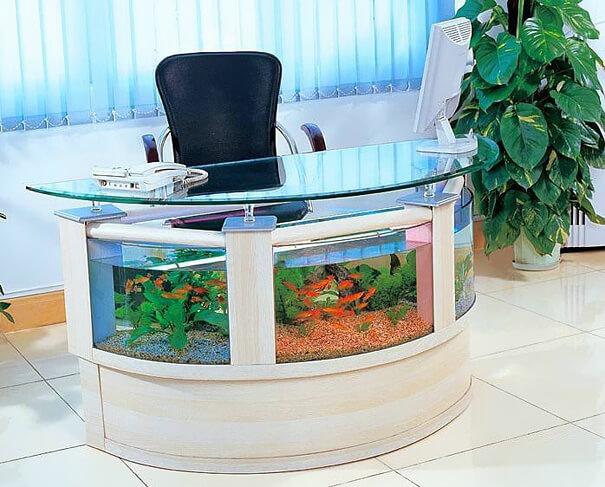 nice aquariums 17 (1)