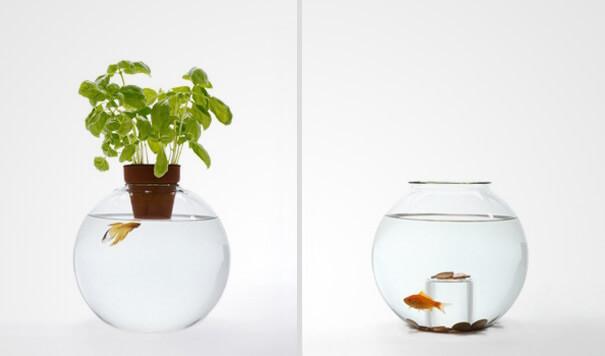 unique fish bowls 23 (1)