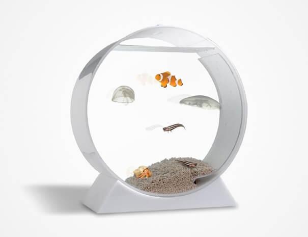 creative aquariums 30 (1)