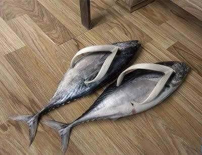 crazy shoes 32 (1)