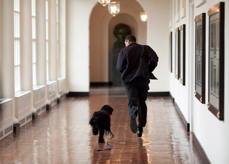 Pete Souza barack obama photos 11 (1)