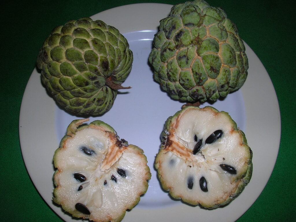 Weird Fruit types 4 (1)