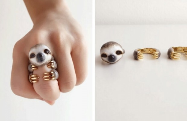 animal rings feat (1)