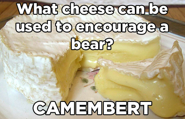 cheese puns 2 (1)
