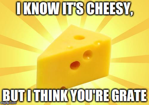 cheese puns 22 (1)