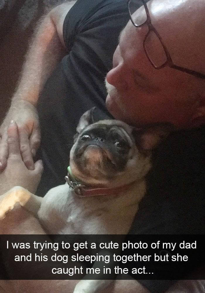 dogs on snapchat 25 (1)