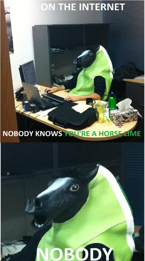 funny horse images 6 (1)