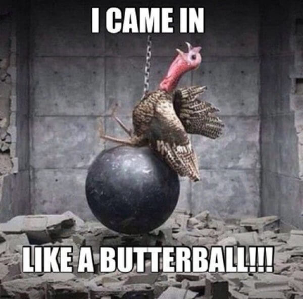 funny thanksgiving pictures 18 (1)
