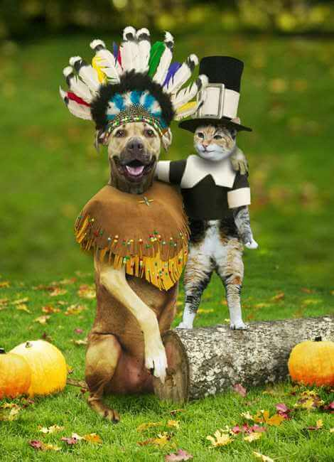 funniest thanksgiving pictures 3 (1)