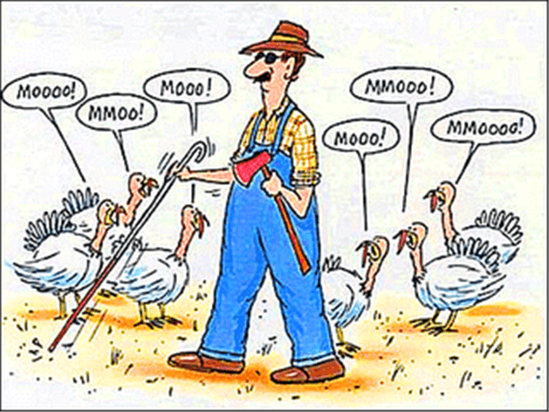 funny thanksgiving pictures 37 (1)