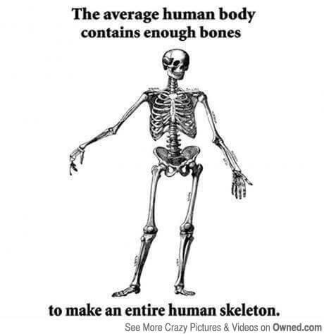 skeleton jokes 22 (1)