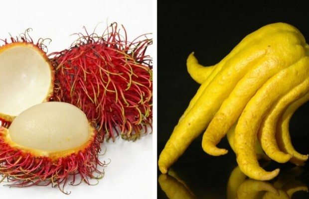 Weird Fruits To Try 8