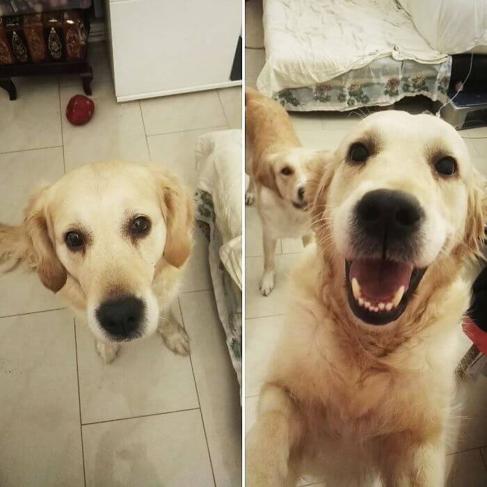 before after being called a good boy 12 (1)